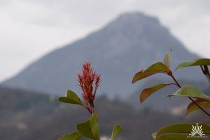 Bergpanorama Gardasee
