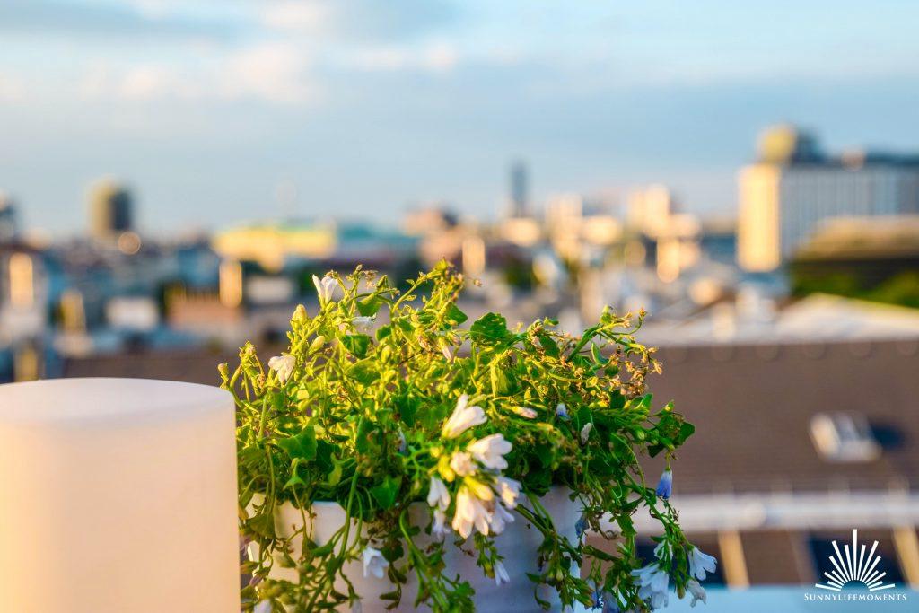Ausblick über Wien Atmosphere Ritz-Carlton