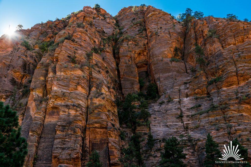 Rotes Gestein Zion Nationalpark