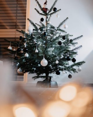 Create your own #christmasmagic 🪄 🎄💫 home is always where the Christmas tree is 🥰🎁 or? #christmasmood #christmastime #familytime #merrychristmas